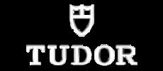 Tudor orologi - Logo