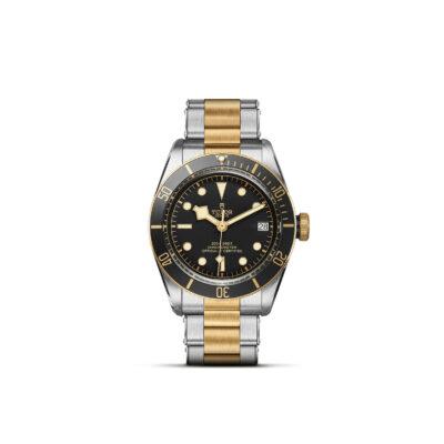 Tudor Black Bay M79733N-0008